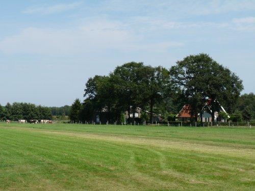Enschede 2009: P1020568.JPG